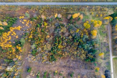 droonifotod pildistamine drooniga Tartumaa