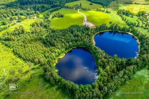 droonifotod pildistamine drooniga Väike Linajärv Suur Linajärv Endla loodukaitseala