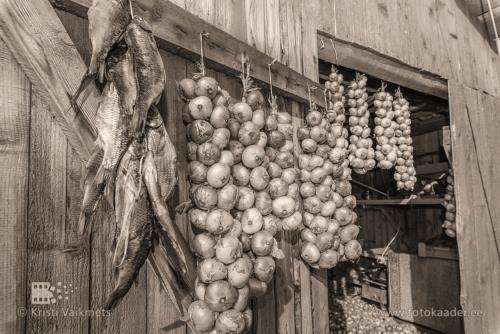 sibulatee puhvetite päev peipsi sibul ja kala